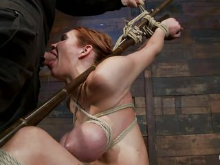 bound whore getting her marvelous mouth stuffed with shlong