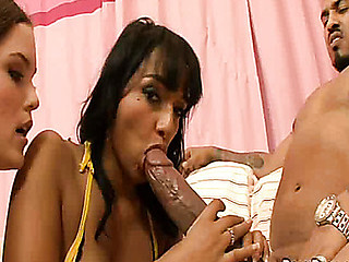 Two Shlong hungry sluts are sex demons over big chubby pecker.